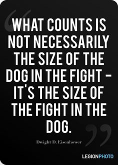 Eisenhower - size of the fight in the dog More