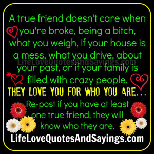 True Friend Quotes A true friend doesn't care.