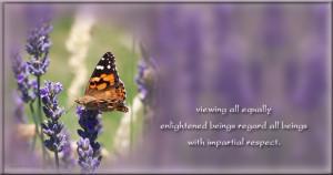 Impartial respect quotes, Buddhist quotes, enlighten quotes