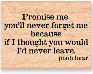 POOH QUOTE- Promise me you'll n ever forget me...-pooh bear -wood ...
