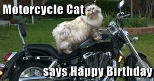 Happy Birthday Motorcycle cat: Happy Birthday, Motorcycles Cat ...
