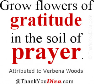 ... of gratitude in the soil of prayer. Attributed to Verbena Woods