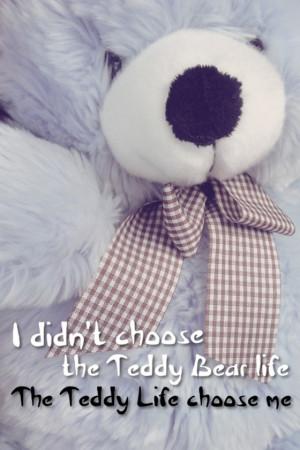 did not choose the teddy bear