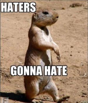 http://i.verylol.com/1/haters_gonna_hate.jpg
