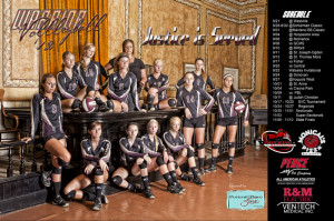 Volleyball Team Posters Banners and schedule posters