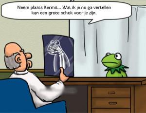 Slecht nieuws voor Kermit de Kikker