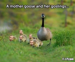 Funny Ryan Gosling Mother Goose Joke Picture Photo