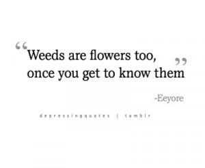 Eeyore Quotes (Images)