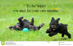 ... Jerningham with two adorable poodles enjoying life to the fullest