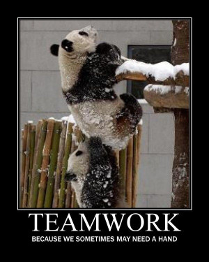 Inspirational Teamwork Quotes