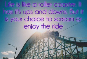 Life is like a roller coaster ride essays