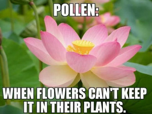 Allergies. Your body is just jealous.