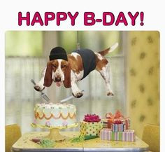 crazy dog more birthday quotes happy birthday funny dogs birthday ...