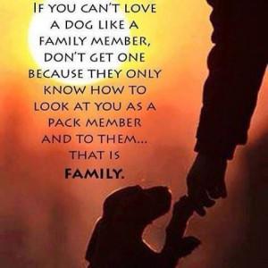 Pets = family :)