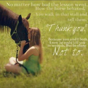 Love My Horse Sayings Love your horse no matter what