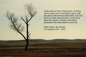 My Antonia Tree
