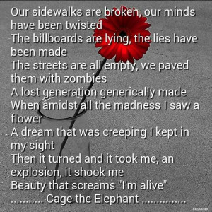 Cage the Elephant quote from the song Tiny Little Robots. #quotes # ...