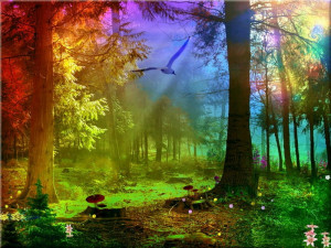 3d abstract Rainbow Forest Abstract Fantasy HD Wallpaper