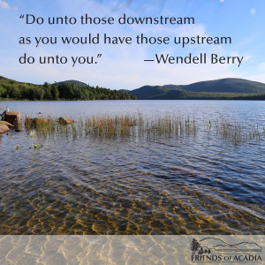 Friday Quote: Wendell Berry