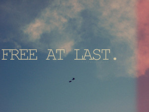 image quotes typography sayings free at last free freedom birds sky ...
