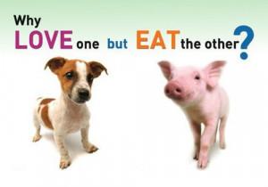 The Great Big Vegan Dilemma