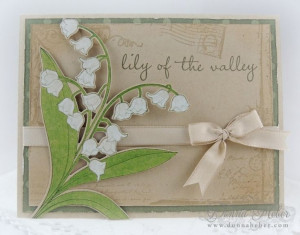 Ocicat - Lily of the Valley