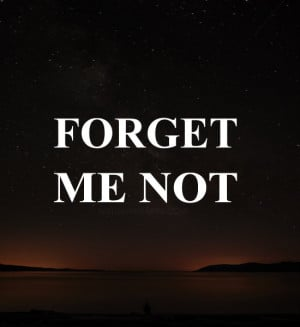Dont Forget Me Quotes And Sayings Forget me not