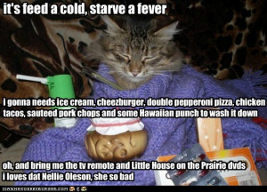it's feed a cold, starve a fever