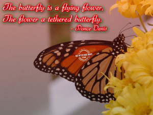 the butterfly is a flying flower the flower a tethered butterfly ponce ...