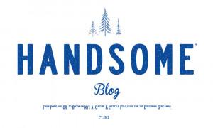Handsome Logo Handsome blog