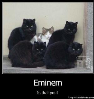 Eminem funny