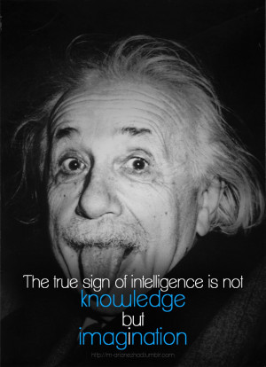 Einstein Quotes 13