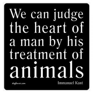 ... Animal, Immanuel Kant, Dogs, Favorite Critter, Ghandi Quotes Animals