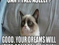 Wallpaper Title: Grumpy Cat Quotes No sandizone − May 19, 2014 cat