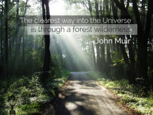 John Muir Quotes Mountains Image Search Results Picture
