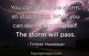 Calm Yourself, The Storm Will Pass: Quote About Calm Yourself The ...