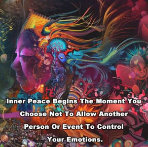 Inner peace begins the moment you choose not to allow another person ...