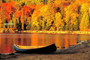 Romantic-Autumn-Wall papers (4)