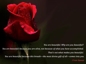 you are beautiful why are you beautiful you are beautiful because you ...
