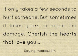 It only takes a few seconds to hurt someone, but years to repair the ...