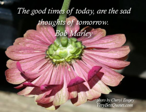 Sad Quotes - The good times of today, are the sad thoughts of tomorrow ...