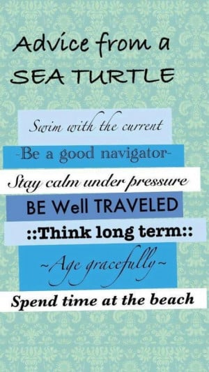 Sea turtle advice-nice sentiments for our sea turtle cards
