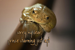 Prince Charming Photograph by Carolyn Marshall - Not Prince Charming ...