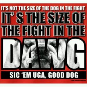 More like this: georgia bulldogs football , georgia bulldogs and ...