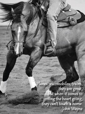 Horses get your heart going.