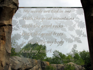 Great Bear Wilderness - Grizzly Bear Exhibit - Etched Quote on Viewing ...