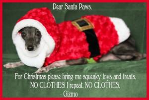 funny dog christmas cards the 25 funniest family dog photo christmas ...