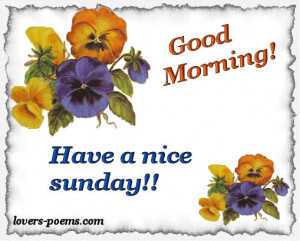 good sunday and a nice week happy sunday and a nice week