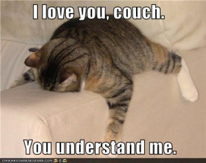 This is how I feel after a long day… | Funny Pictures, Quotes, Pics ...
