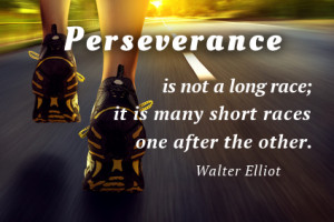 ... Perseverance is not a long race; it is many short races one after